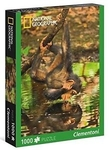 PUZZLE 1000 EL NATIONAL GEOGRAPHIC CHIMPPANZEE BPZ