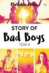 Story of Bad Boys 4